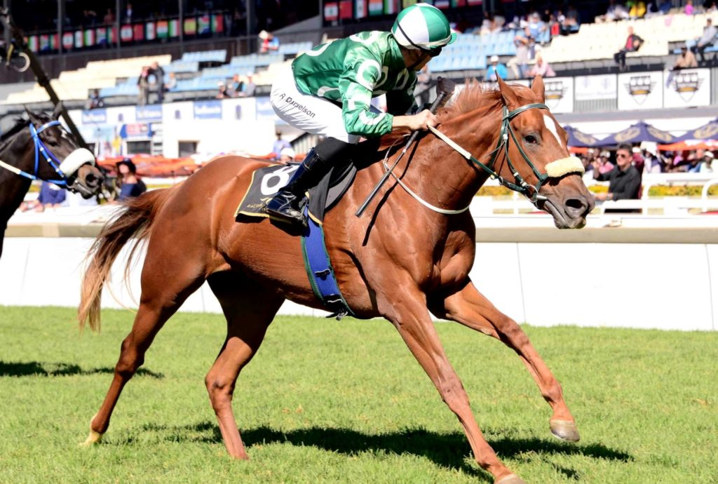 Ronnie's Candy gives King Of Kings a second win the Gr2 SA Fillies Nursery. Image: JC Photos