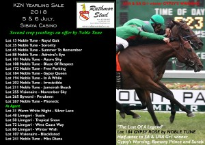 Rathmor Stud At The KZN Yearling Sale