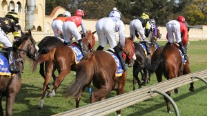 KZN Jockeys And Trainers Challenge Hotting Up