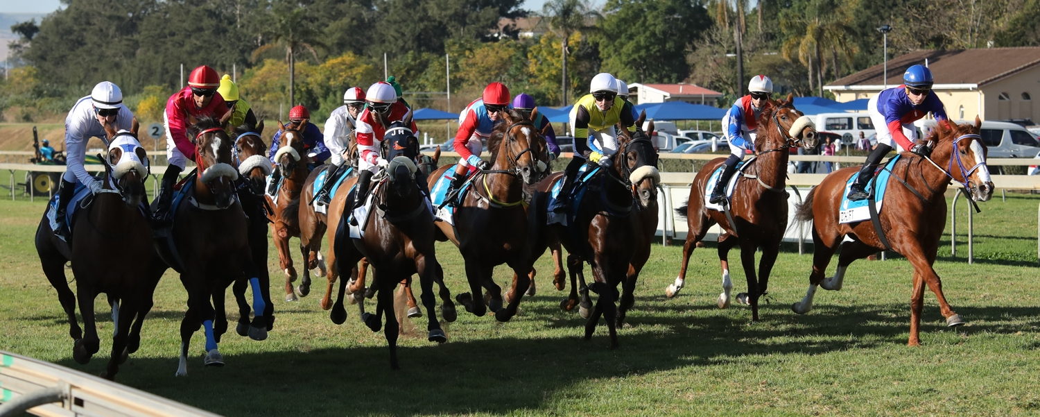 Witchcraft on the far right begins her lead after jumping from the stalls, on the first round of two in the marathon 2400m at Scottsville. Images: Candiese Marnewick