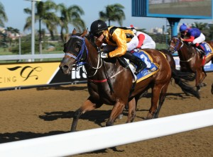 Updated Points: KZN Jockey And Trainers Challenge 2 June