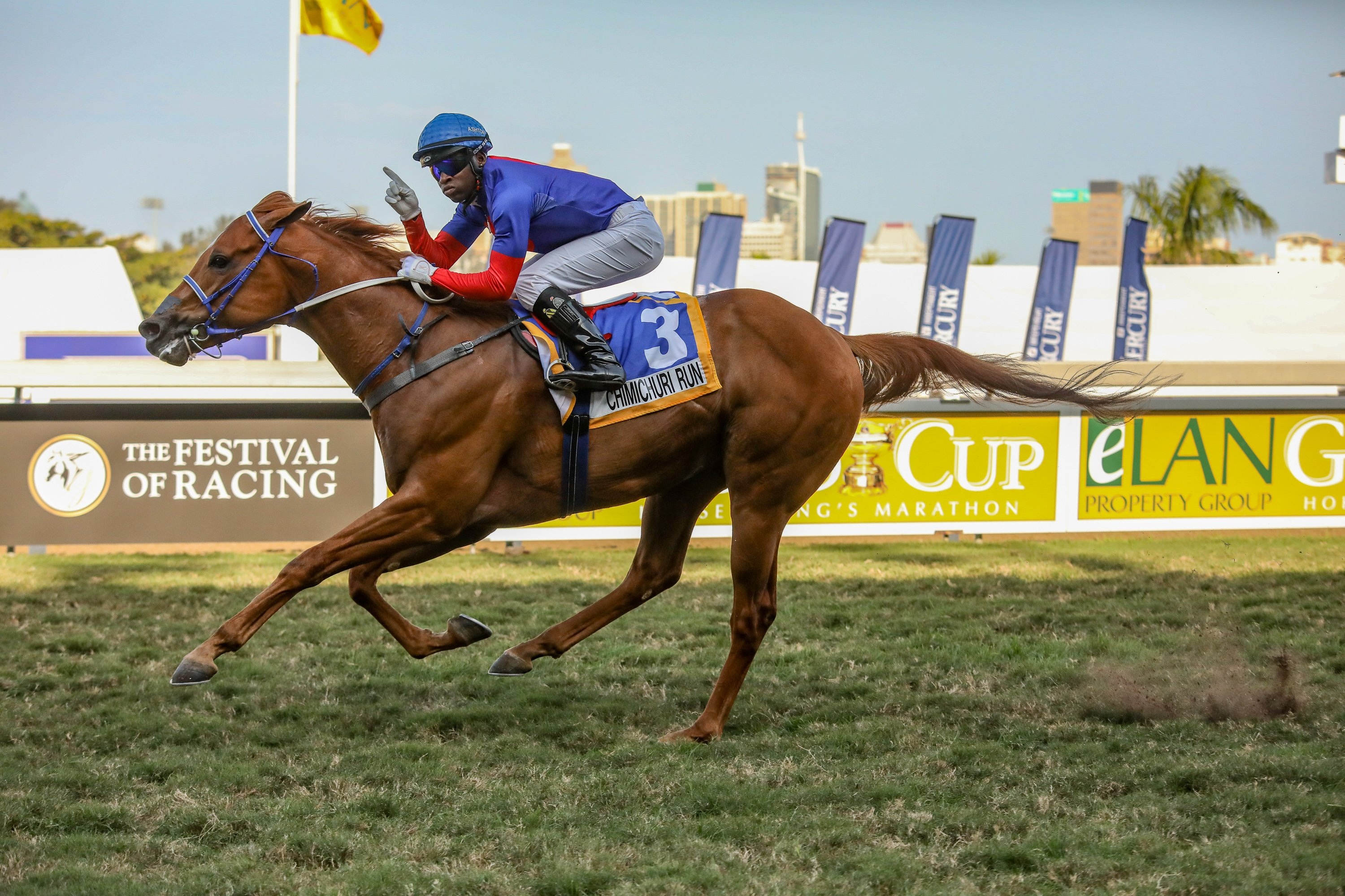 Chimichuri Run out of #kznbred Gr1 winning mare, Spiced Gold, takes the Gr3 Umkhomazi Stakes. Image: Candiese Marnewick