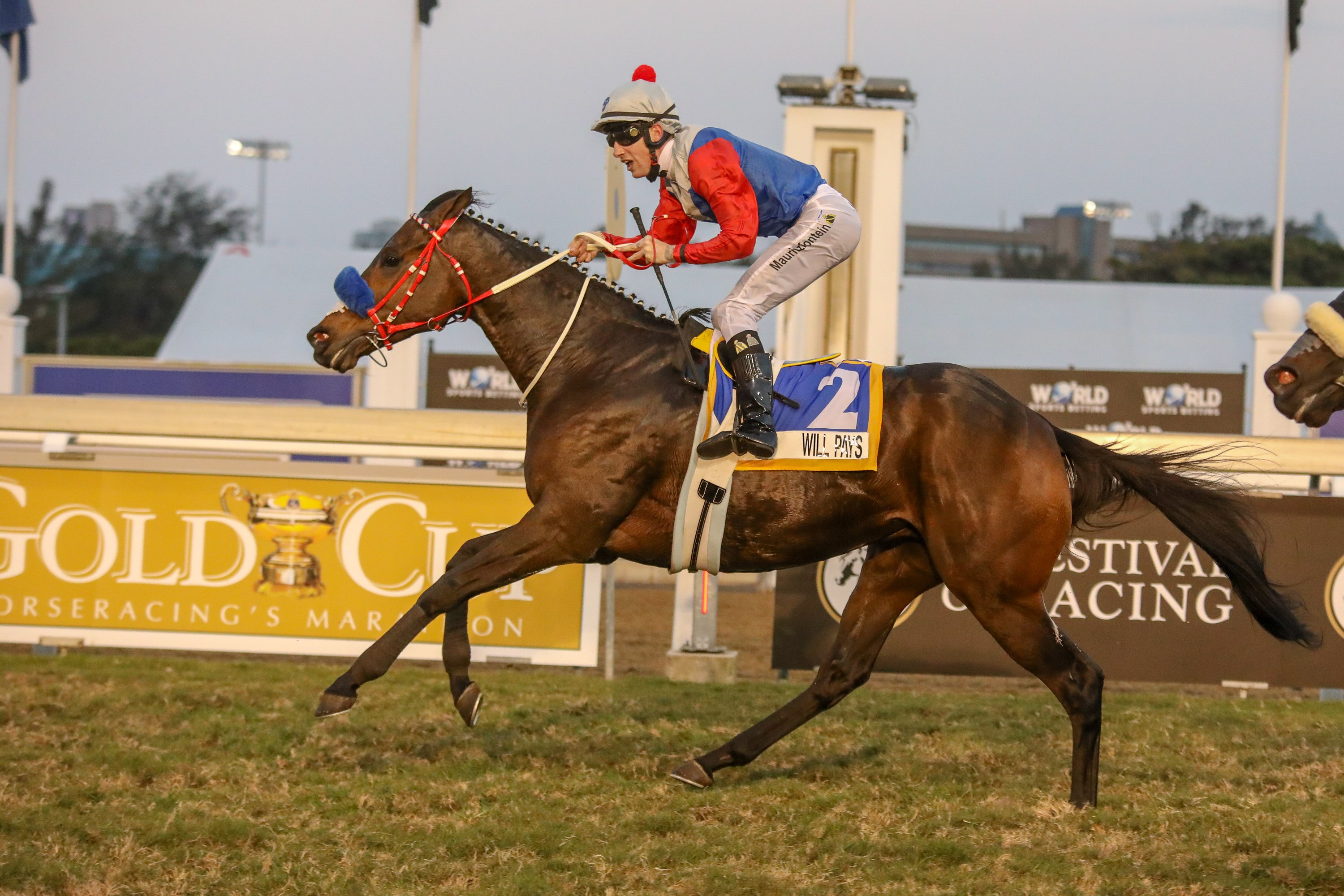 Will Pays, a half-brother to Rathmor Stud broodmare Rattled, wins the Gr1 Mercury Sprint. Image: Candiese Marnewick