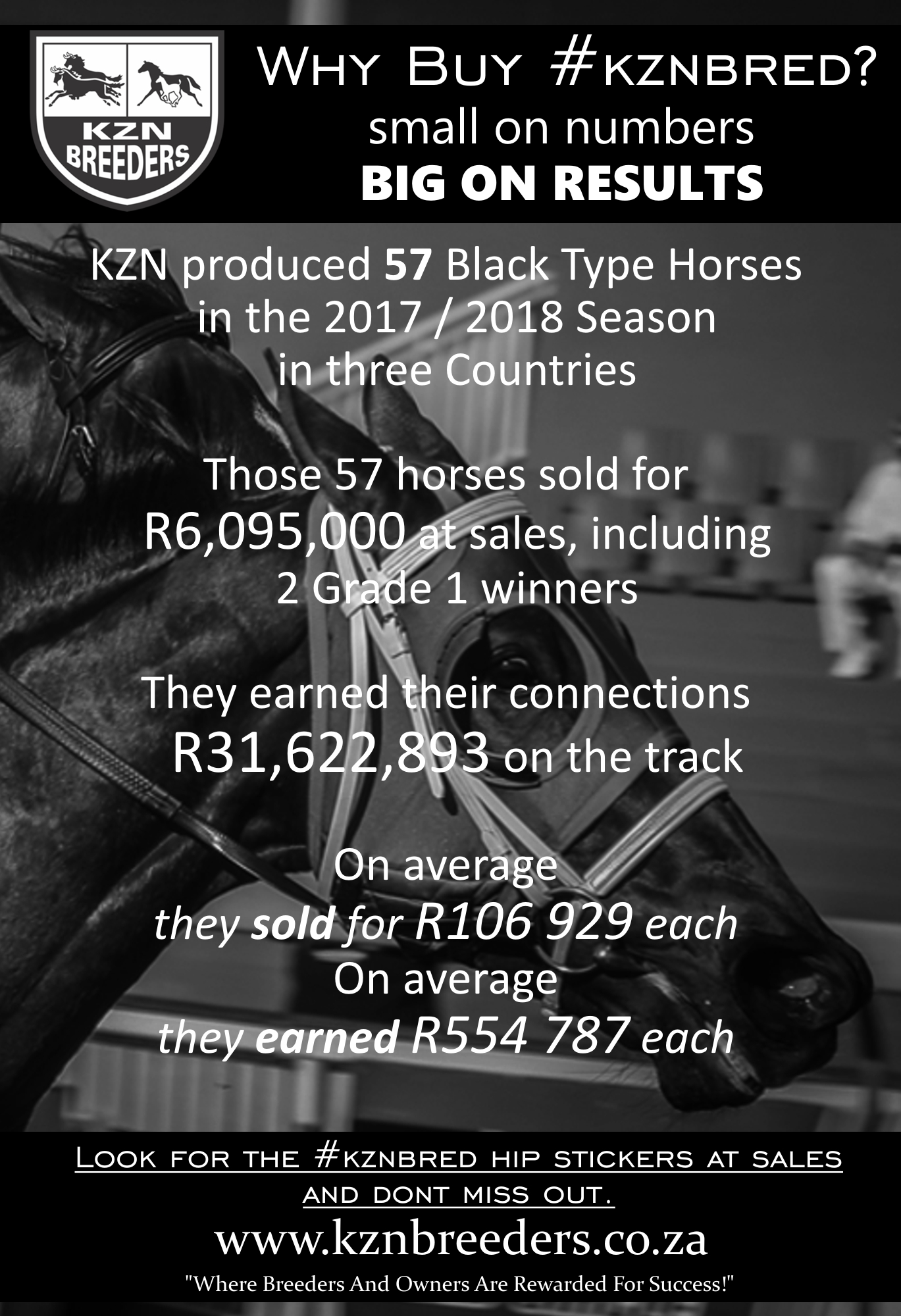 2017 - 2018 Black Type Stats - Buy #kznbred