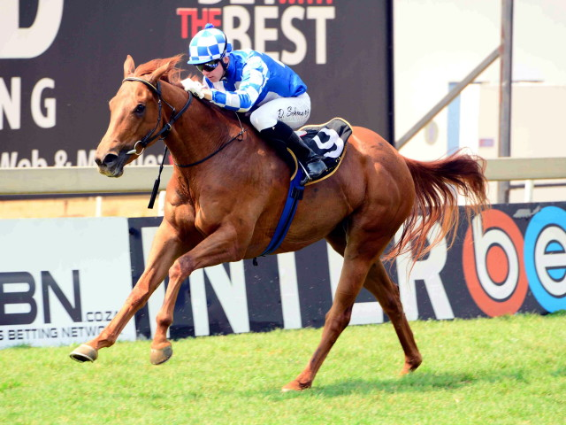 See Me Run winning at Turffontein on 24th September. Image: JC Photos