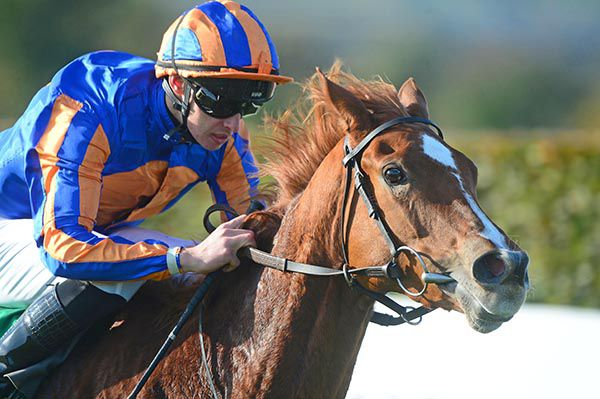 2YO Peach Tree wins a Listed race at Navan. She is bred on the same Galileo x Pivotal cross as Flying The Flag.