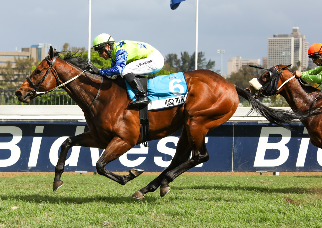 Hard To Play beats an impressive field in the Pinnacle Stakes over 1200m. Image: Candiese Marnewick