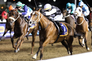 #kznbred Double At Greyville For Oratorio