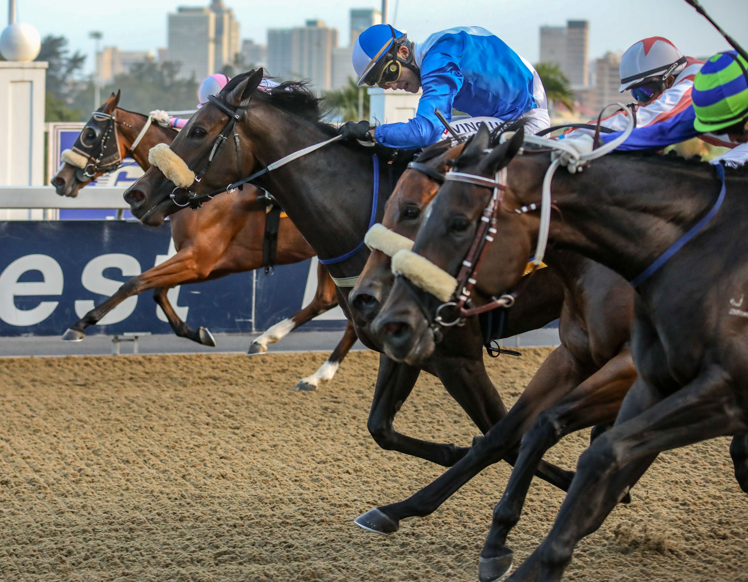Sweet Preserve in the blue and white colours gets up to beat a close finishing field in a bravely fought race. Image: Candiese Marnewick