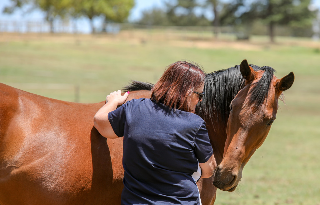 Cathy Martin of Hadlow Stud shares a moment with a broodmare. Image: Candiese Marnewick