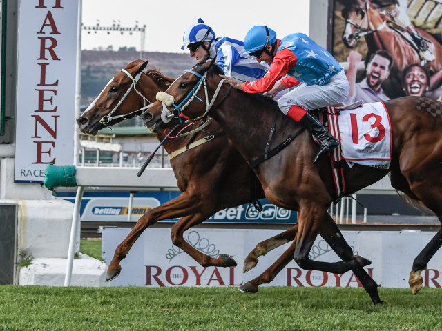 #kznbreds finished 1-2 in the Gr1 Empress Club Stakes, headed by Camphoratus. Image: Chase Liebenberg