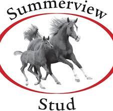 summerview