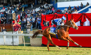 Camphoratus Given Green Light Into Vodacom Durban July After Scratching