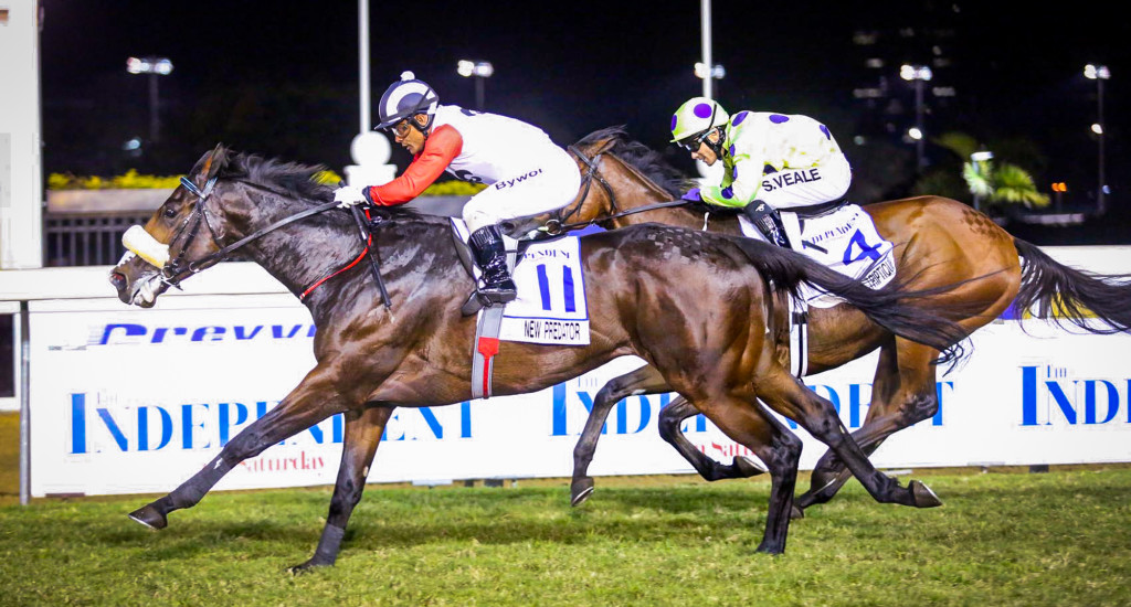 New Predator wins the Gr2 Drill Hall Stakes. Image: Nkosi Hlope
