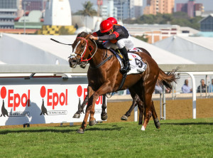 EXCITING YOUNG SIRES DOMINATE CLIFTON'S NATIONAL DRAFT