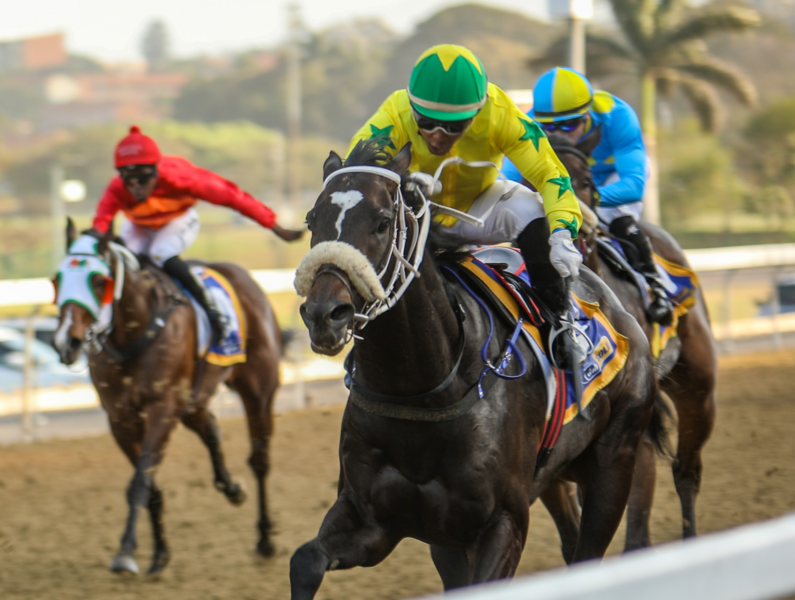Drunken Sailor made it a double for Irish Flame. Image: Candiese Marnewick