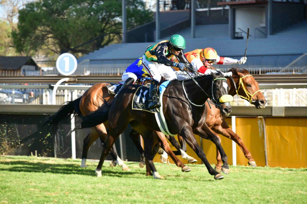 Angels Power and Prince Of Kahal go head to head.
