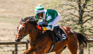 SUMMERHILL SALES OFFER STAR STUDDED DRAFT AT RTR SALE
