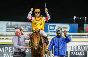 Prince Of Kahal Does It Again For Clifton Stud!
