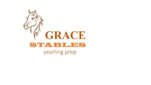 GRACE STABLES OFFER THREE AT TWO YEAR OLD SALE