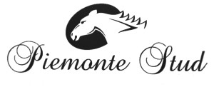Scribante's Dominate PE Juvenile Awards