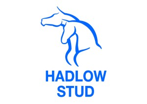HADLOW STUD ARE 15 STRONG AT KZN YEARLING SALE