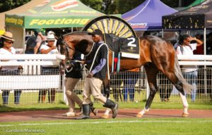 Bohica 2nd Gr2 Senor Santa, Smart Lot Updates For Nationals From KZN