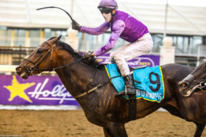 Fight Song Takes Model Man Listed