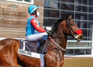Star #kznbred Fillies Nominated for Vodacom Durban July