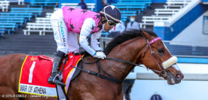 War Of Athena Out Of VDJ