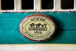 Act Of War Impressive Stats!