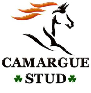 The Return Of Camargue Stud