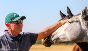 AUGUST RUSH SIBLING A STANDOUT IN BLUE SKY THOROUGHBREDS DRAFT